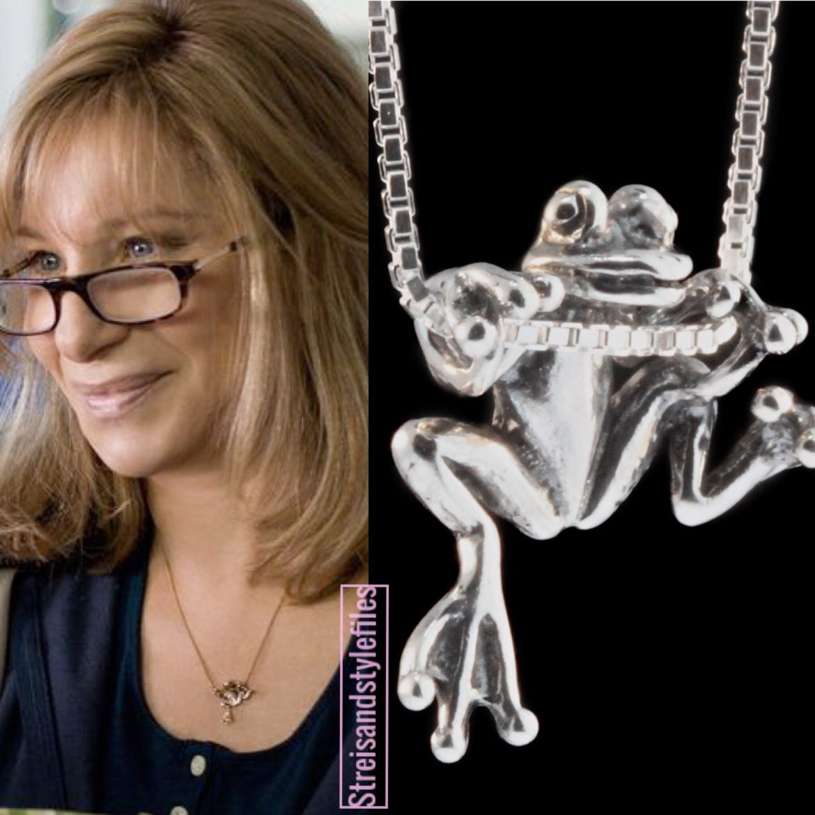 The Guilt Trip, Marty Magic Frog Necklace
