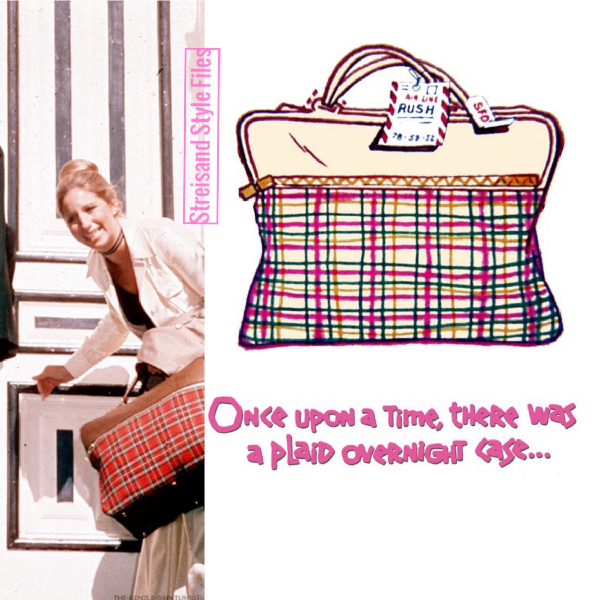 What's Up Doc plaid overnight case