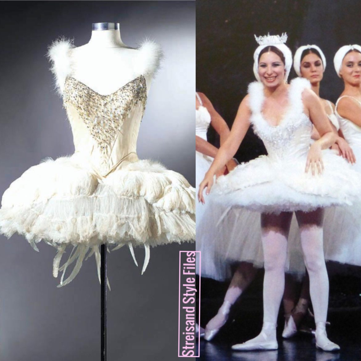 Funny Girl Swan Lake Tutu