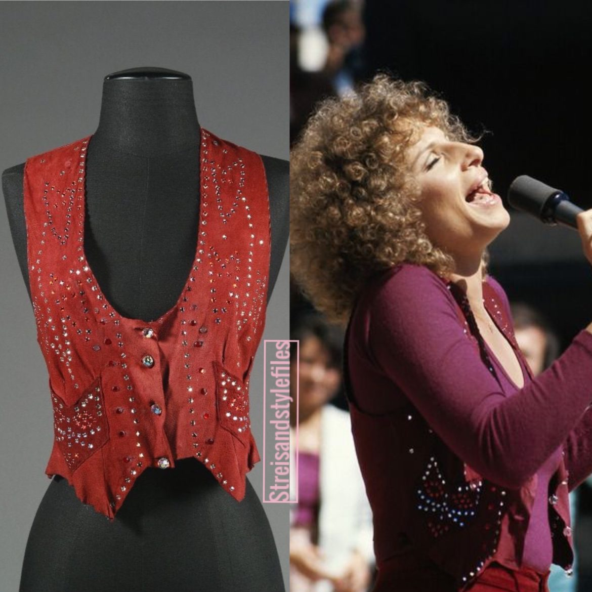 A Star Is Born Burgundy Suede Cat Vest