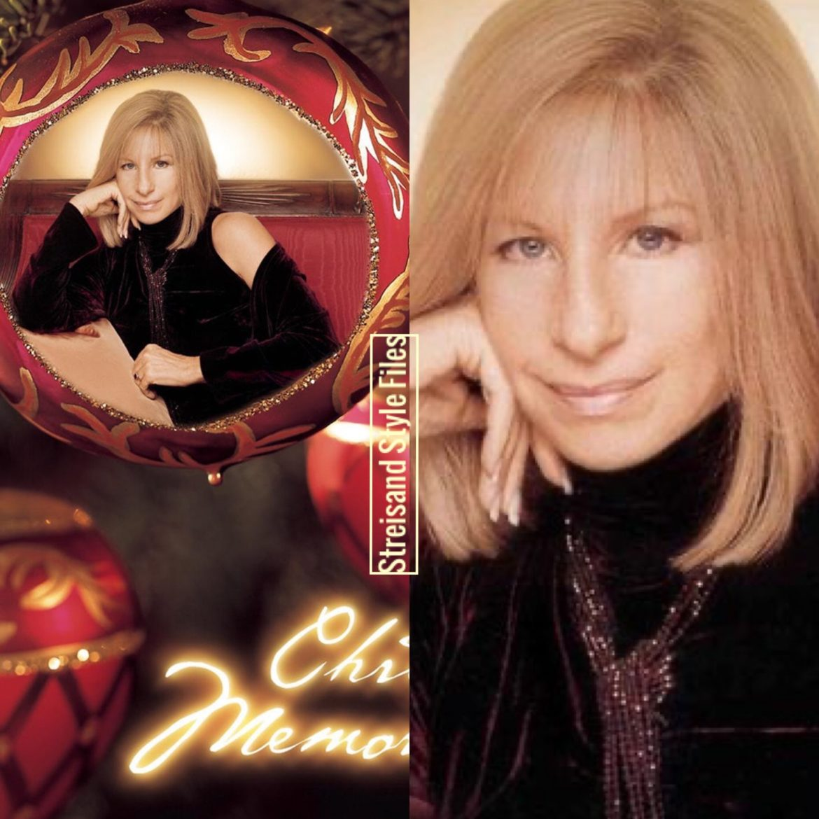 Christmas Memories Album Cover In Velvet DKNY